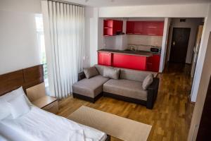Grand'Or Exclusive Apartment, Appartamenti  Oradea - big - 6