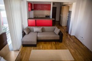 Grand'Or Exclusive Apartment, Appartamenti  Oradea - big - 4