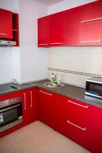 Grand'Or Exclusive Apartment, Appartamenti  Oradea - big - 2