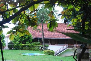 Wood Palace Heritage Resort, Üdülőközpontok  Pīrmed - big - 15
