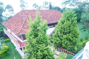 Wood Palace Heritage Resort, Üdülőközpontok  Pīrmed - big - 24