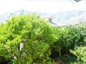 Vila Altini Borsh, Apartmanok  Borsh - big - 65