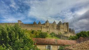 Hotel Du Pont Vieux, Hotely  Carcassonne - big - 55