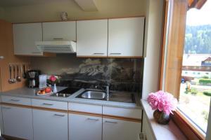 Haus Alexander, Guest houses  Schladming - big - 41