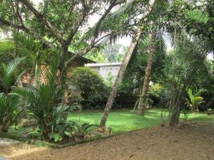 Deer Park Ratnapura, Vendégházak  Ratnapura - big - 5