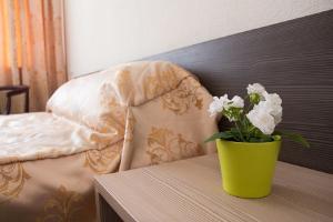 Hotel AeroHotel, Szállodák  Bogasovo - big - 28