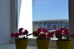 Hotel AeroHotel, Hotely  Bogashevo - big - 17