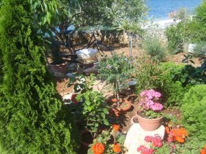 Apartments Villa Iva Alla, Appartamenti  Trogir - big - 7