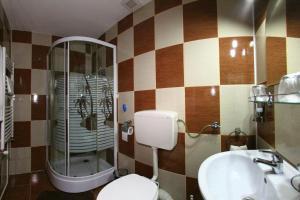 Pensiunea Radena, Guest houses  Arad - big - 5