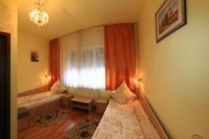 Pensiunea Radena, Guest houses  Arad - big - 24