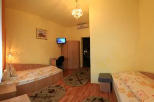 Pensiunea Radena, Guest houses  Arad - big - 25