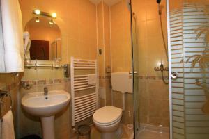 Pensiunea Radena, Guest houses  Arad - big - 26
