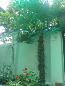 Prostor Guest House, Penzióny  Loo - big - 84