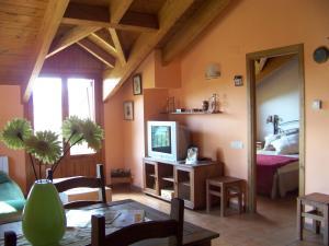 Apartamentos Chuandervera, Appartamenti  Laspaúles - big - 74