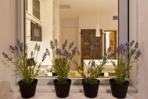 Appartement avec terrasse, sur le port, pieds dans l'eau, Apartments  Cassis - big - 10
