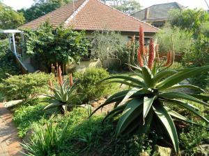 Mackaya Bella Guest House, Penzióny  Durban - big - 24