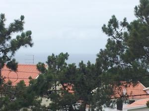 Casa Branca Pinhal, Priváty  Nazaré - big - 11