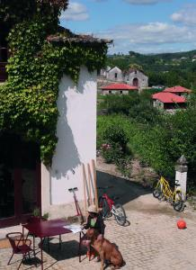Casa Agricola da Levada, Vendégházak  Vila Real - big - 24