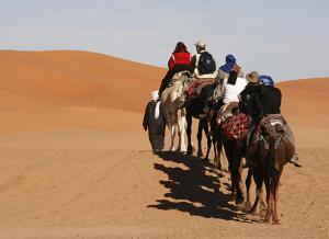 Camel Trek Bivouac, Zelt-Lodges  Merzouga - big - 28