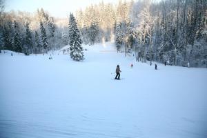 Reinis, Holiday parks  Turaida - big - 44