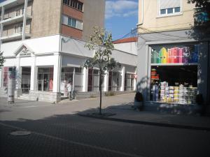 Christine's Apartment, Appartamenti  Korçë - big - 2