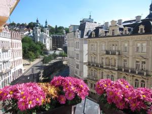 Madonna Apartments, Appartamenti  Karlovy Vary - big - 1