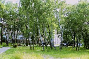 Apartment na Komsomol'skoj