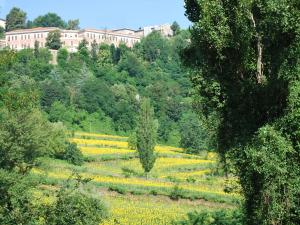 B&B Villa Paradiso, Bed & Breakfasts  Urbino - big - 22