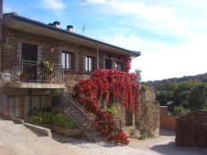 Apartamentos Albarcas