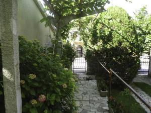 Apartment Lala & Nina, Ferienwohnungen  Banjole - big - 14