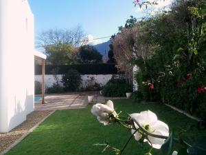 Montarbre Cottage, Pensionen  Franschhoek - big - 12