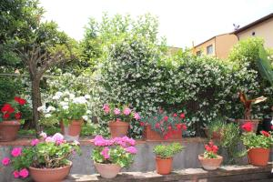 Casa per Ferie Regina Santo Rosario, Bed and Breakfasts  Florencie - big - 34