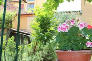 Casa per Ferie Regina Santo Rosario, Bed and Breakfasts  Florencie - big - 33