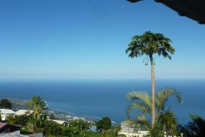 La Caz Oceane, Bed & Breakfasts  Saint-Leu - big - 1