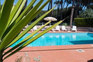 Hotel Kon Tiki, Hotely  San Vincenzo - big - 71