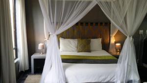 Studio z łóżkiem typu queen-size