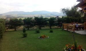 Mountain View Apartment, Apartmány  Zlatibor - big - 4