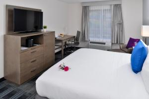 Holiday Inn Express & Suites San Diego - Mission Valley, Hotels  San Diego - big - 16