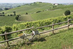 Agriturismo Albarossa, Vidiecke domy  Nizza Monferrato - big - 53