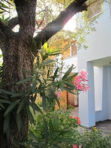 Annarita Apartment