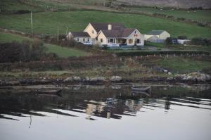 Ocean Villa Country Home, Bed and Breakfasts  Clifden - big - 64