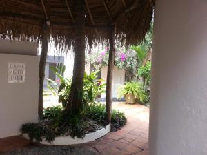Cabo Alto, Dovolenkové domy  Monte Gordo - big - 26