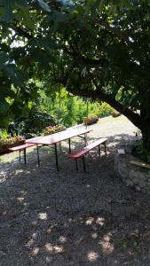 Casa delle Noci, Dovolenkové domy  Grimacco - big - 19