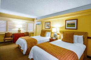 Two Double Beds - Upper Floor