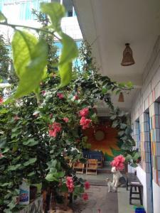 Wonderful Time Youth Hostel, Hostels  Dali - big - 19