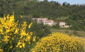 Residence Città Ideale, Aparthotely  Urbino - big - 28