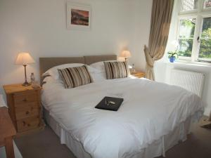 The Fernery B&B, Bed & Breakfasts  Lynton - big - 10