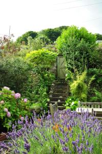 The Fernery B&B, Bed & Breakfasts  Lynton - big - 15