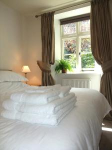 The Fernery B&B, Bed & Breakfasts  Lynton - big - 13