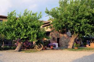 Casa Di Campagna In Toscana, Vidiecke domy  Sovicille - big - 120
